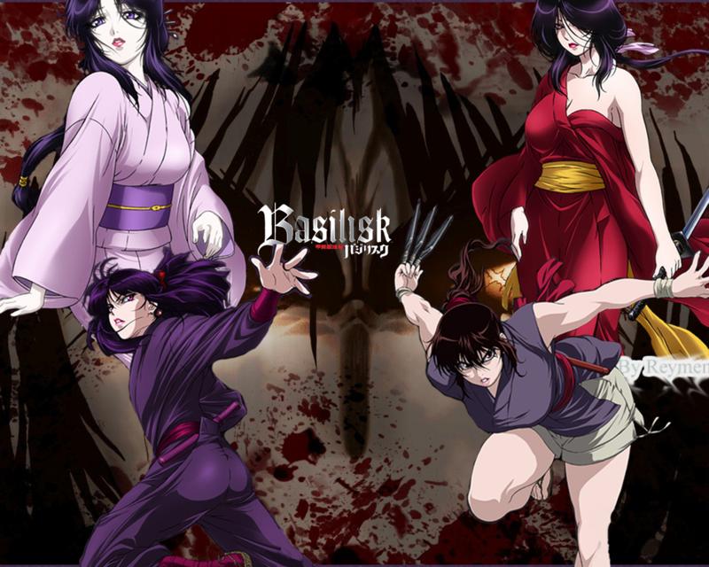 basilisk_duel_iga_vs_kouga_by_reymen